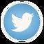 Twitter_64x64x32